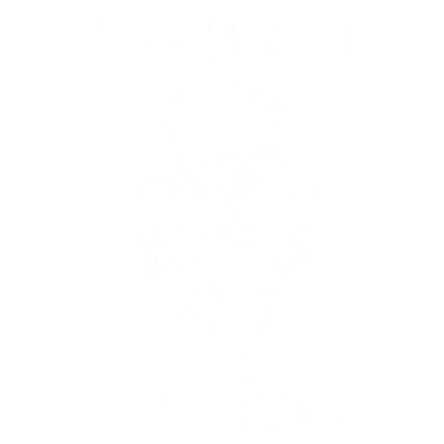 Cyber-Tribal